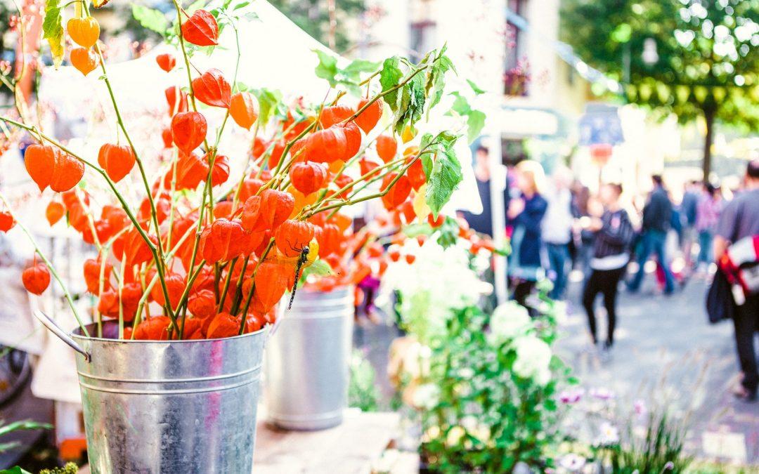 Downtown Lakeland Farmers Curb Market